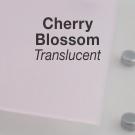 CHERRY_BLOSSOM_TRANSLUCENT